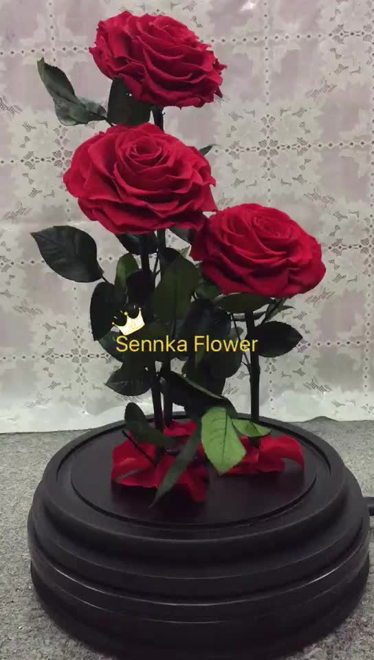 Wholesale Real Touch Preserved Flower Luxury Dubai ...