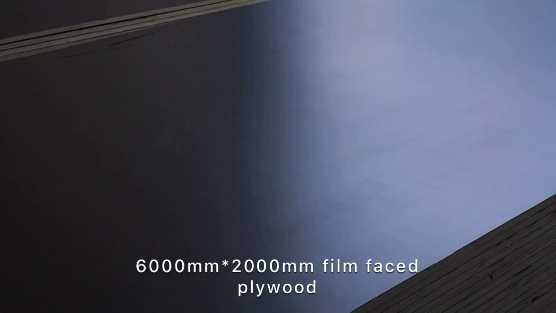 5400mmx2000mm 3000mmx1500mm JUMBO LARGE BIG SIZE FILM FACED PLYWOOD