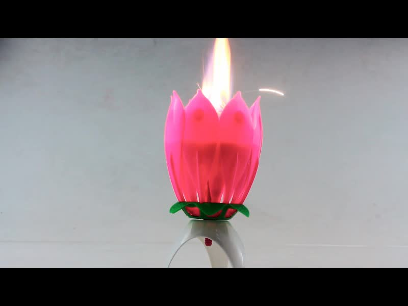 Wholesale Little Lotus Flower Single Layer Tripod Bloom Music Novelty Birthday Candles