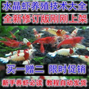 观赏宠物水晶虾樱花虾极火虾养殖技术教程大全买一赠二