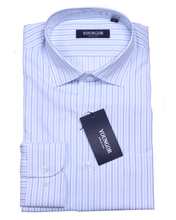 Youngor雅戈尔专柜正品 2013新款涤棉免烫长袖男士衬衫NP13187-22图片