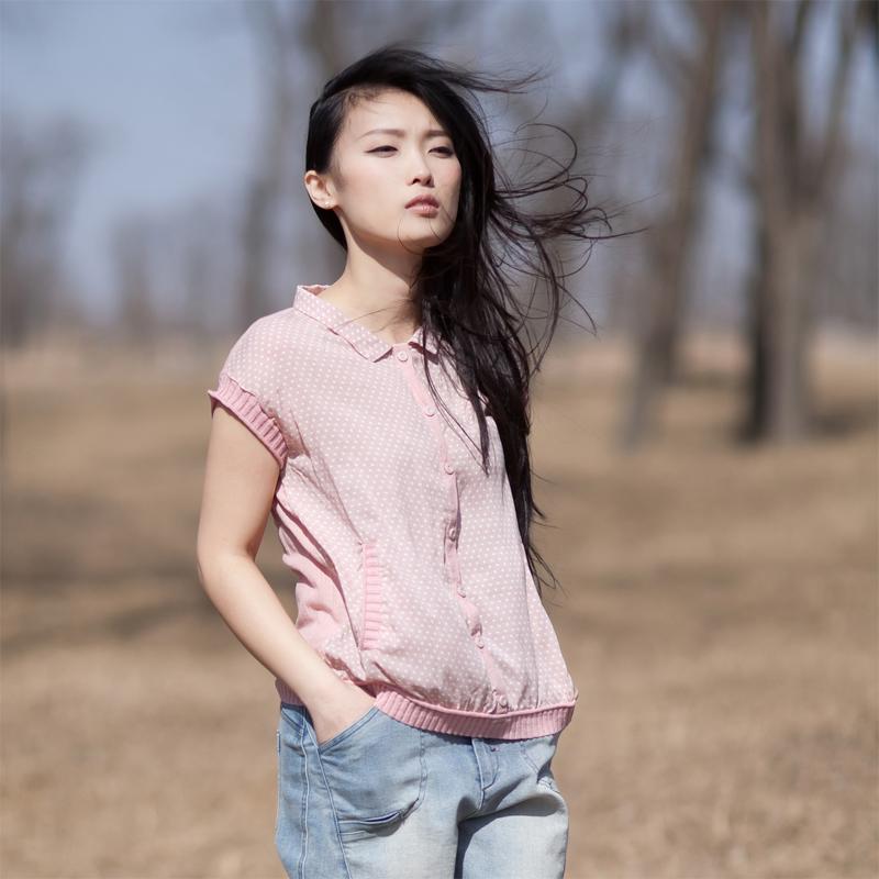 женская рубашка Southern Yi people c2597 2013 —2 Городской стиль Короткий рукав В горошек 2013 года Воротник-стойка Один ряд пуговиц