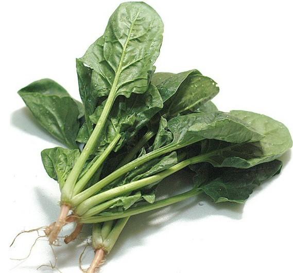 原厂蔬菜彩包菠菜种子 数百粒 四季种植 绿植盆栽 满38包邮