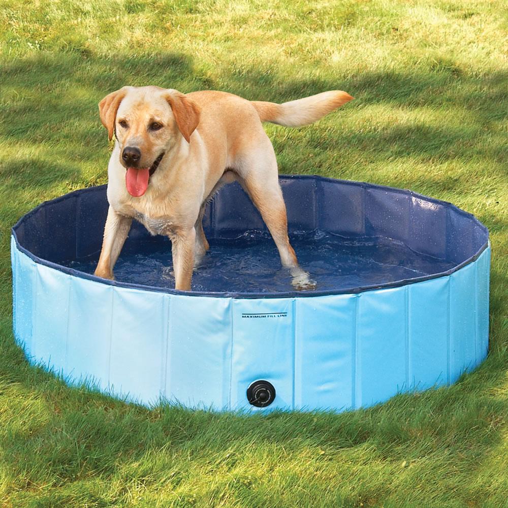 Ванночка для животных OTHER  2013