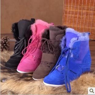 Женские сапоги Domestic brands 2013 ASH