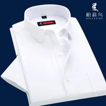 柏莉鸟夏季男士短袖衬衫男韩版职业工装寸商务修身免烫半袖白衬衣