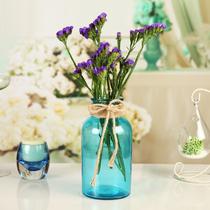 优讯现代简约彩色透明玻璃水培花瓶花器 装饰摆件桌面插花花瓶