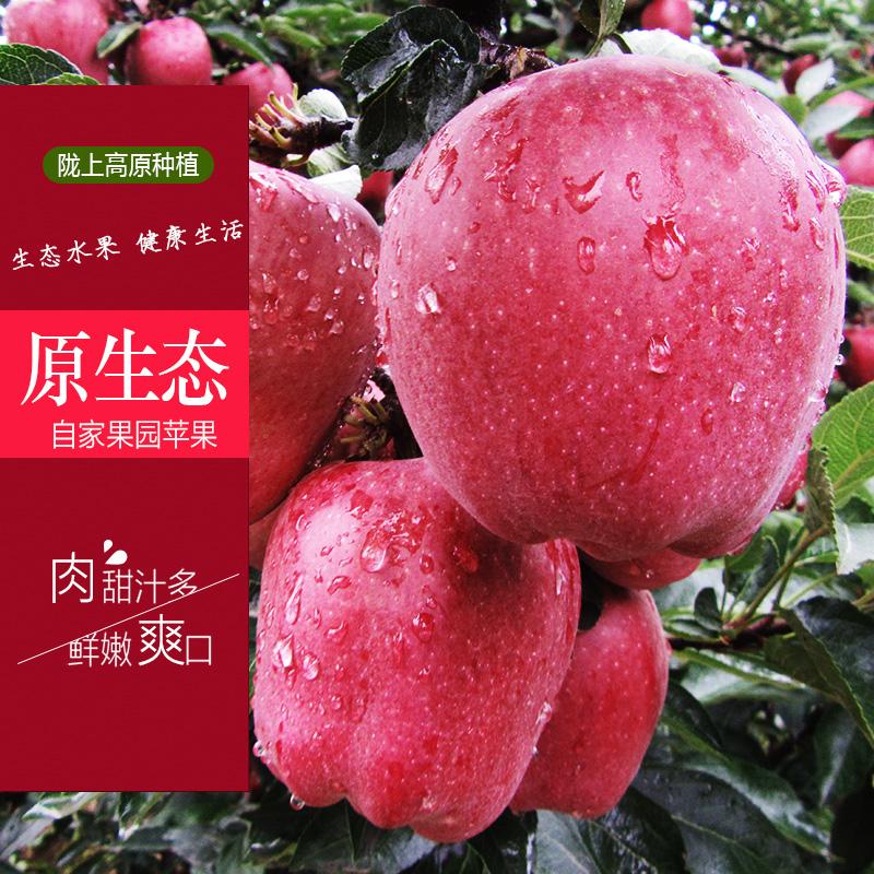 甘肃水果天水花牛苹果礼县苹果红富士蛇果宝宝水果10斤包邮超甜