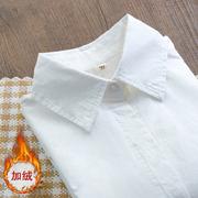 加绒加厚保暖秋装纯棉尖领长袖白衬衫韩风打底衬衣职业装