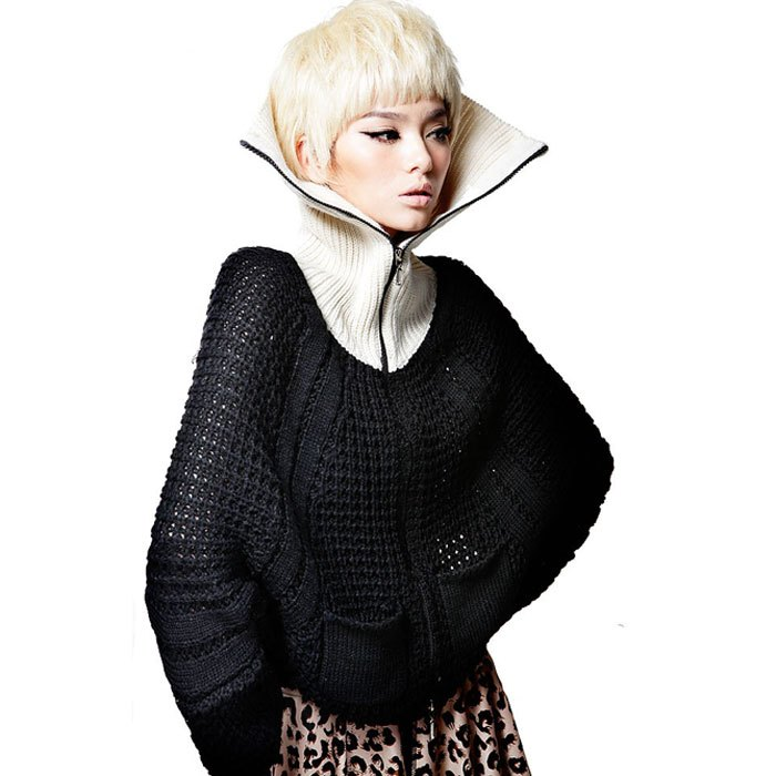 women high collar bat sleeve sweater