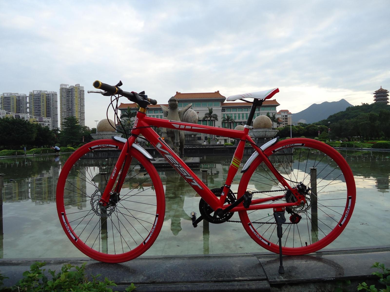 шоссейный велосипед Wister 16689023 700