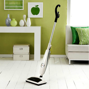 Haan 1100W 350ml 400CC Professional Portable Steam Household Vacuum Cleaner