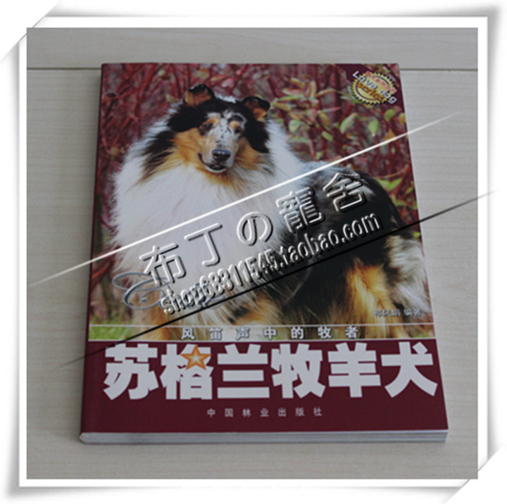 Scottish Collie dog training book dedicated Su Mu color books on dog feeding dog training books