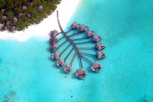 马尔代夫可可棕榈DK岛 6日自由行