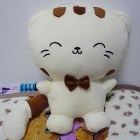 毛绒玩具大脸猫玩偶可爱猫咪公仔大儿童节礼物女生男创意生日礼物