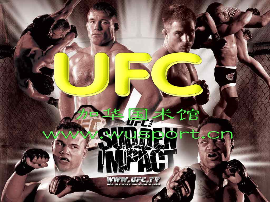 Боксерские перчатки UFC MMA, купить в интернет магазине Nazya.com