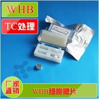 【WHB】TC处理48孔板专用细胞爬片直径为8mm圆形细胞爬片伽马灭菌