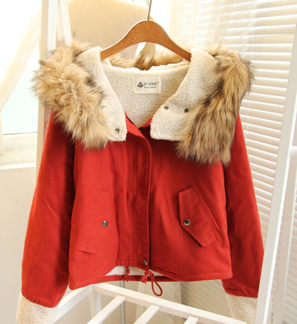 Женская утепленная куртка 8009/0120 2012 Прямой Длинный рукав Осень 2012