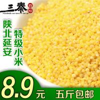 陕北黄小米新米有机小米农家五谷杂粮月子米小黄米宝宝米胜沁洲黄