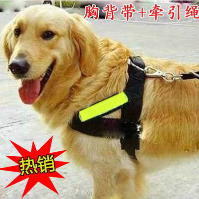 Large dog pet dog rope suit working dog leash large dog harness with a trained German Shepherd Golden Retriever dog rope