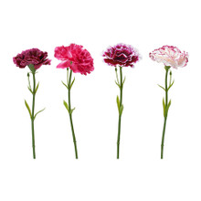 Authentic guarantee ikea bought simi add artificial flowers, multicolored carnations