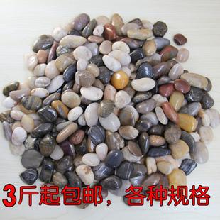 花盆园艺画天然鹅卵石五彩色铺面石头小庭院鱼缸原石子南京雨花石