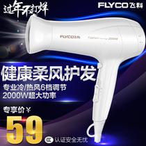 飞科FH6232电吹风机2000W以上大功率冷热风家用吹风筒静音吃风机