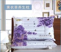 2015年新款舒乐枕芯决明子枕芯天天特价