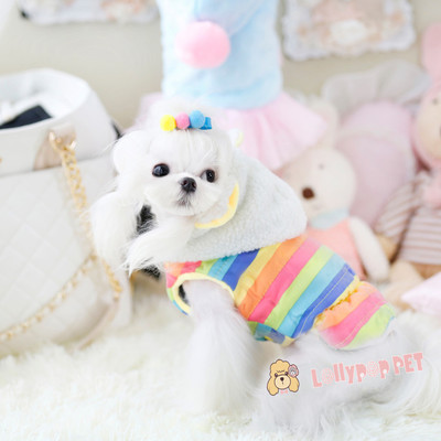 New winter rainbow lollipop Teddy Bee mounted pet dog supplies thick cotton clothes wholesale teacup dogs