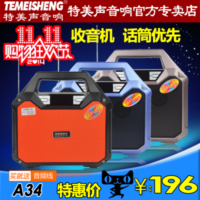 TEMEISHENG A34 portable outdoor sound card 5 inch portable mobile power rechargeable battery Speaker Square Dance