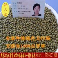 东北有机种植绿豆 清热 解暑 纯绿色绿豆 农村发货 500克=8.8