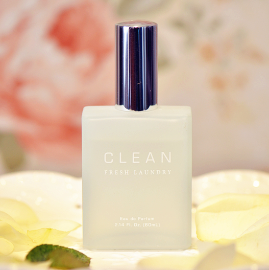 Need For Rare Summer Paragraph Clean Clean Fresh Laundry Fragrance