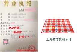 企业代购100 Ant Picnic Math Activity Set by Learning Resou