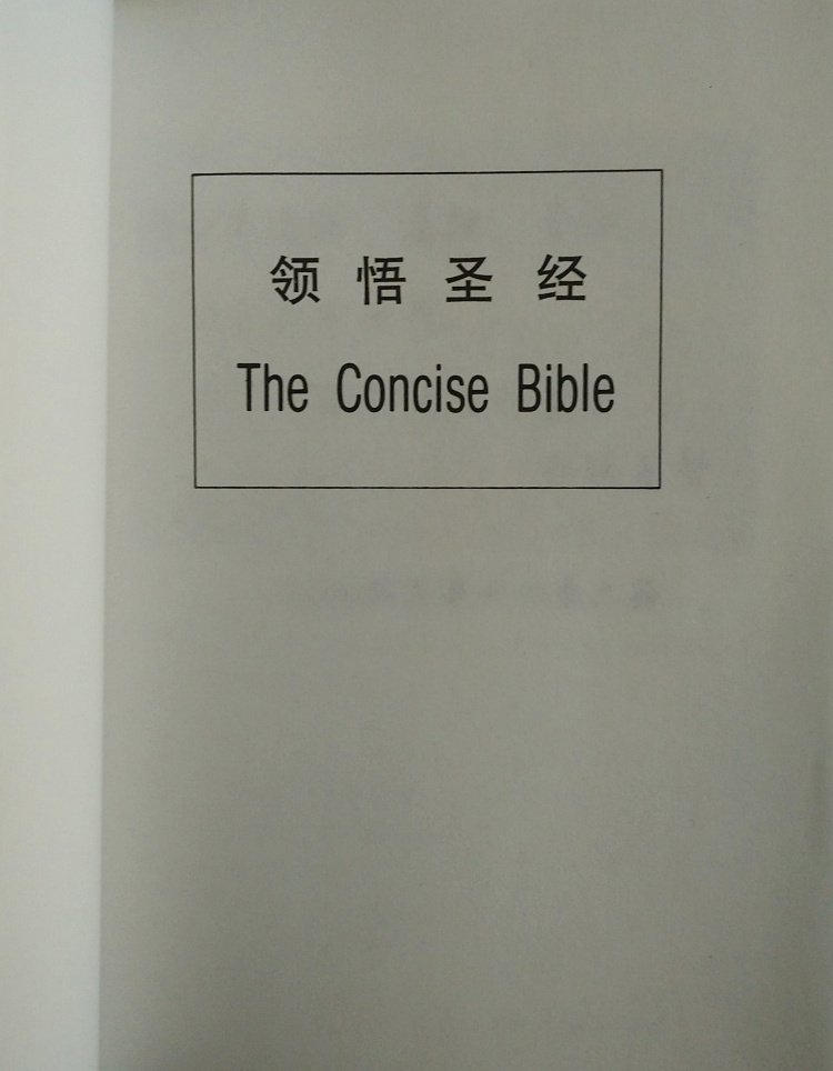 领悟圣经 The Concise Bible