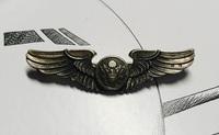 美国代购USAF原品 鹰式飞行翼章 纯银翅膀徽章 二战标准别针2英寸