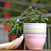 全新PP树脂圆形塑料花盆种菜盆 送底托 阳台种菜种圆花盆设备 p71 价格:4.75