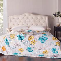苏娜国际 空调被 夏凉被 夏被 单人双人被芯 儿童午睡被 薄被子 价格:118.80
