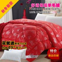 秋冬新款 纯羊毛被 单双人加厚保暖棉被子芯 1.5m1.8m2米床上用品 价格:199.00