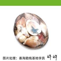 椰壳工艺品礼品【仅此1件,实物拍摄】善淘网曹颖虹捐赠 价格:6.30