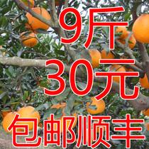 橙子秭归脐橙 超赣南橙 新鲜水果 味甜多汁 果园直销顺丰全国包邮 价格:30.00