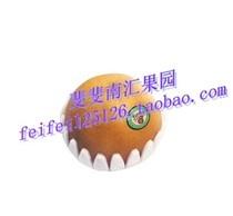 进口水果 新鲜 韩国丰水梨 8-10个原箱礼盒装 限江浙沪 价格:75.00