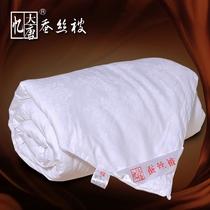 忆大唐家纺正品桐乡桑蚕丝被100蚕丝被芯被子冬被特价厚子母被 价格:299.60