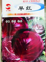 保健蔬菜种子/紫甘蓝/包菜/红圆白菜【早红】春夏秋冬四季满包邮 价格:1.80