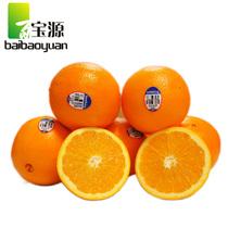 百宝源 新鲜南非进口 脐橙 水果/3斤 京津冀团购全包邮 价格:35.80