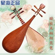 星海酸枝木轴相琵琶 精品红木成人琵琶乐器 专业演奏特价名师推荐 价格:3500.00