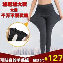 保暖裤羊毛打底秋裤护膝加绒羊绒裤胖mm中老年妈妈加肥加大高腰女 价格:127.36