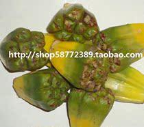 滴血莲花菩提子原籽 精选特大籽 40mm左右 8瓣以上 40颗以上包邮 价格:4.50