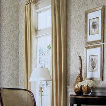 美国约克正品墙纸 欧式卷草莨苕叶 客厅卧室满铺壁纸TW1135/36/37 价格:384.30