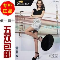 正品耐尔莱卡束腹提臀超薄透明包芯丝连裤袜 女丝袜打底加大加长 价格:18.50