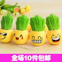 6775 办公室迷你植物盆栽 绿色青草种植QQ表情栽培草头娃娃 特价 价格:3.75
